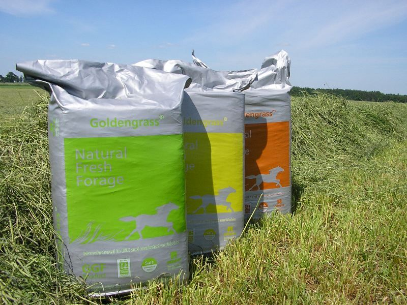Timothy Mix - Golden Grass Ryegrass - 20 kg